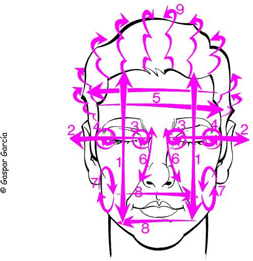 masaje rostro-cabeza