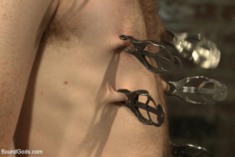 Pinzas japonesas - Pinzas mariposa - Clover clamps